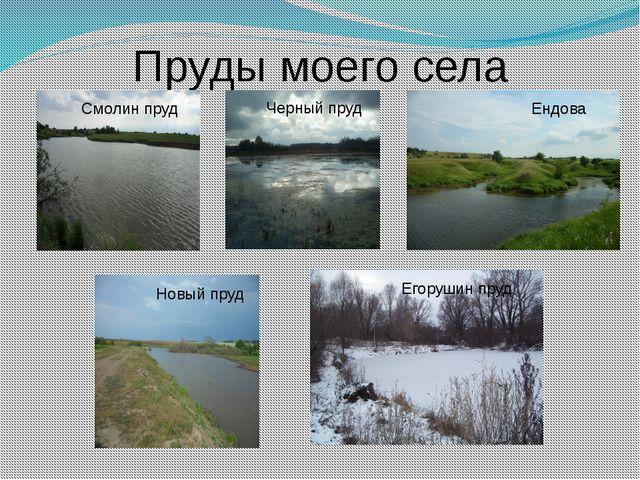 Пруды моего села Ендова Черный пруд Новый пруд Смолин пруд Егорушин пруд