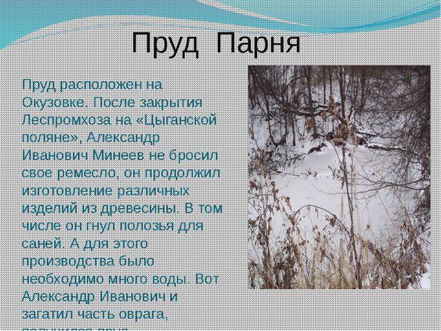 Пруд Парня Пруд расположен на Окузовке. После закрытия Леспромхоза на «Цыганс...