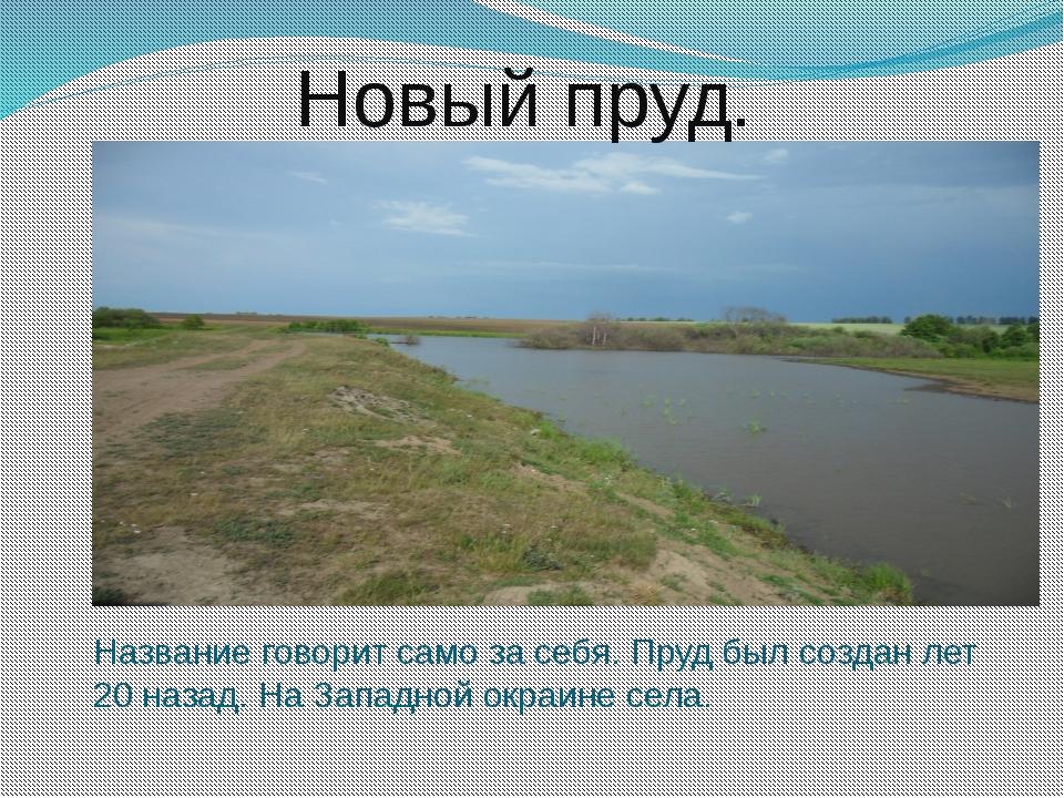 Новый пруд. Название говорит само за себя. Пруд был создан лет 20 назад. На...