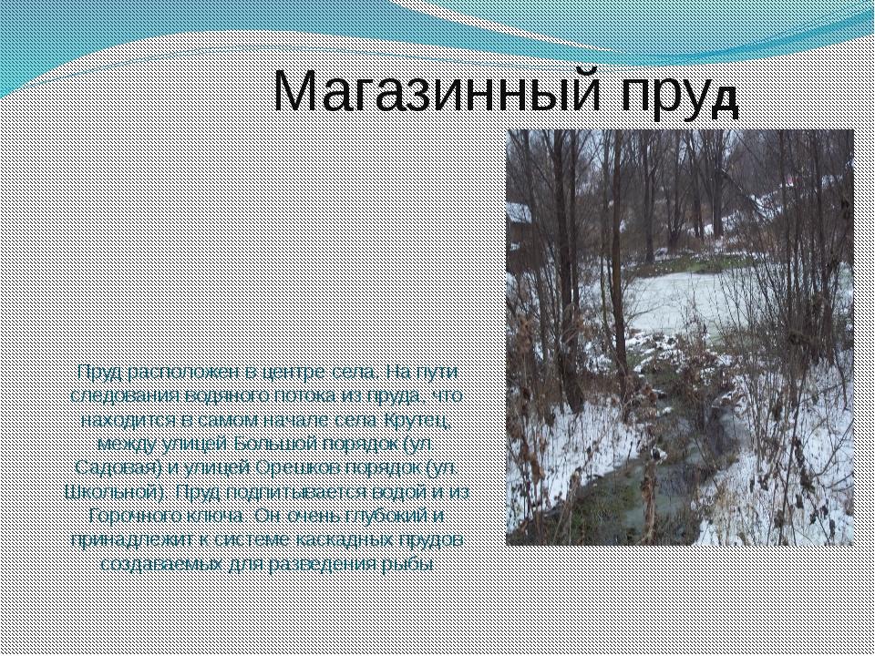 Пруд расположен в центре села. На пути следования водяного потока из пруда, ч...