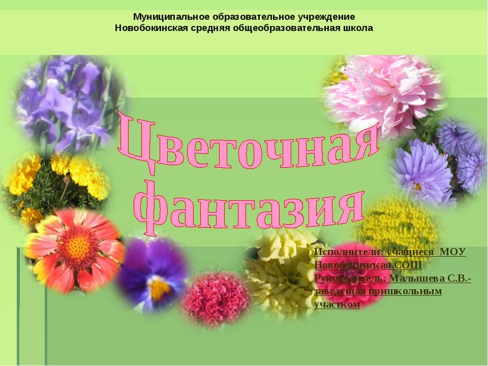Муниципальное образовательное учреждение Новобокинская средняя общеобразовате...