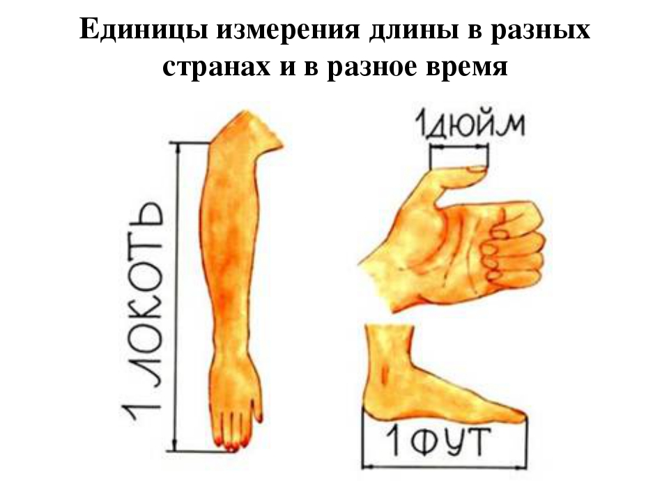 Единицы измерения длины в разных странах и в разное время