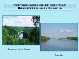 Край таежный, край озерный, край суровый Ненаглядной красотой к себе влечет.