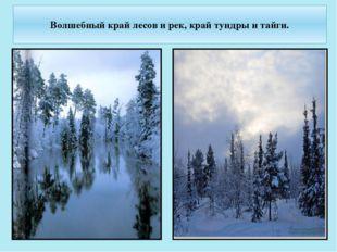 Волшебный край лесов и рек, край тундры и тайги.