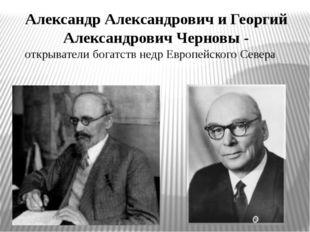 Александр Александрович и Георгий Александрович Черновы - открыватели богатст