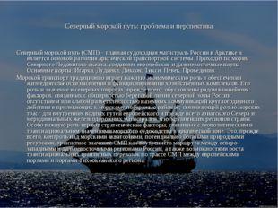 Северный морской путь: проблема и перспектива Северный морской путь (СМП) – г