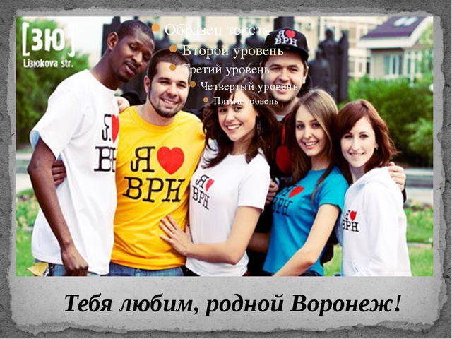 Тебя любим, родной Воронеж!
