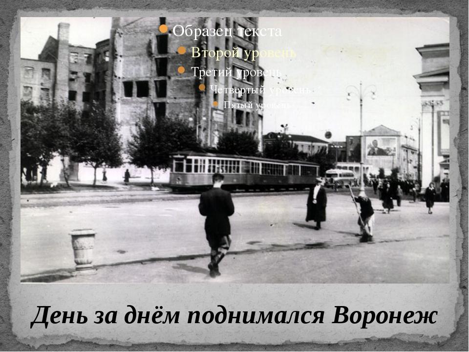 День за днём поднимался Воронеж