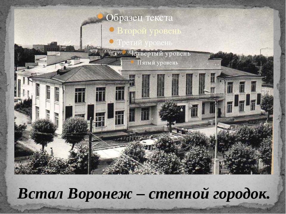 Встал Воронеж – степной городок.
