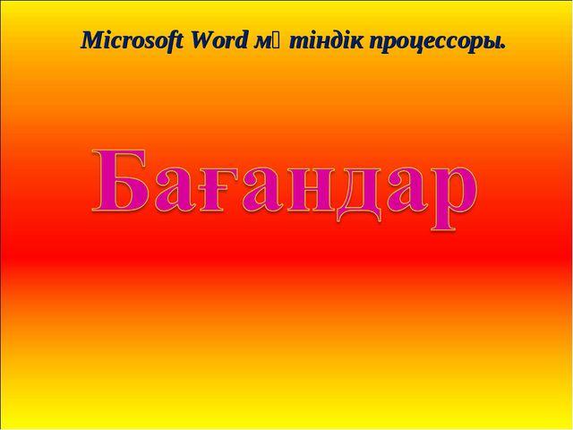 Microsoft Word мәтіндік процессоры.