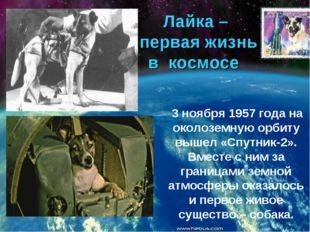 Лайка – первая жизнь в космосе 3 ноября 1957 года на околоземную орбиту вышел