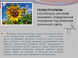 ГЕЛИОТРОПИЗМ - способность растений принимать определенное положение под влия