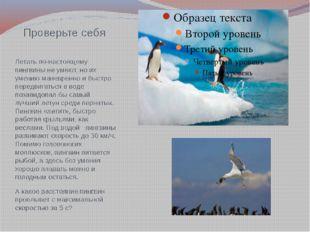 Проверьте себя Летать по-настоящему пингвины не умеют, но их умению маневренн