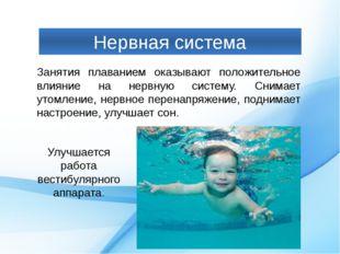 Нервная система Занятия плаванием оказывают положительное влияние на нервную