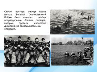 Спустя полтора месяца после начала Великой Отечественной Войны было создано о