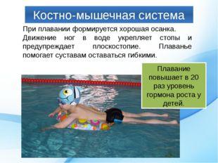 Костно-мышечная система При плавании формируется хорошая осанка. Движение ног
