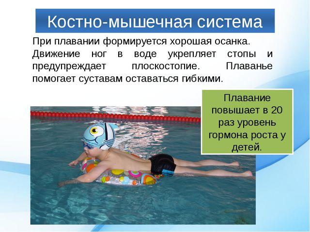 Костно-мышечная система При плавании формируется хорошая осанка. Движение ног...
