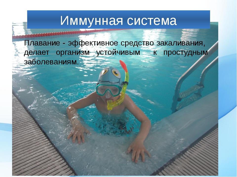 Иммунная система Плавание - эффективное средство закаливания, делает организм...