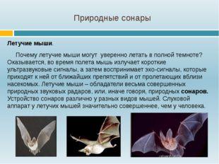 Природные сонары Летучие мыши. Почему летучие мыши могут уверенно летать в по