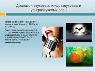 Диапазон звуковых, инфразвуковых и ультразвуковых волн Звуковыми волнами назы