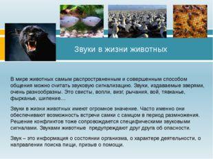В мире животных самым распространенным и совершенным способом общения можно с