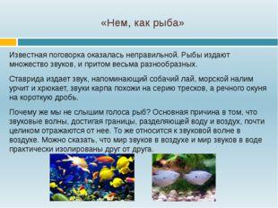 «Нем, как рыба» Известная поговорка оказалась неправильной. Рыбы издают множе