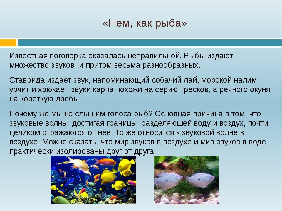 «Нем, как рыба» Известная поговорка оказалась неправильной. Рыбы издают множе...