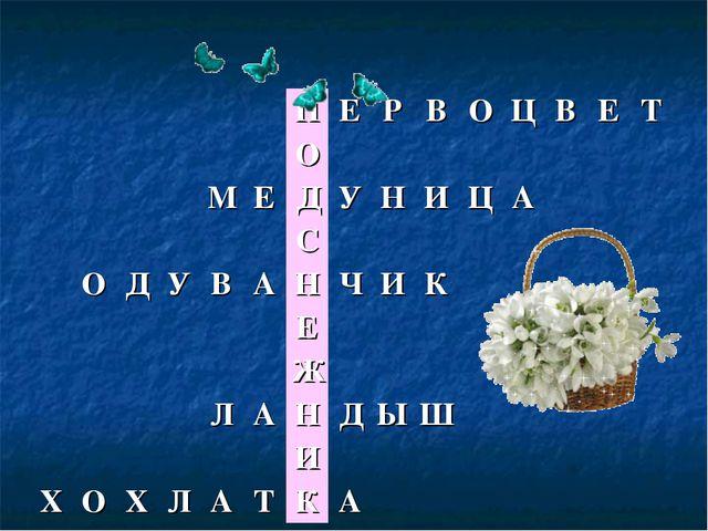 ПЕРВОЦВЕТ О МЕДУНИЦА С ОДУВАНЧИК...