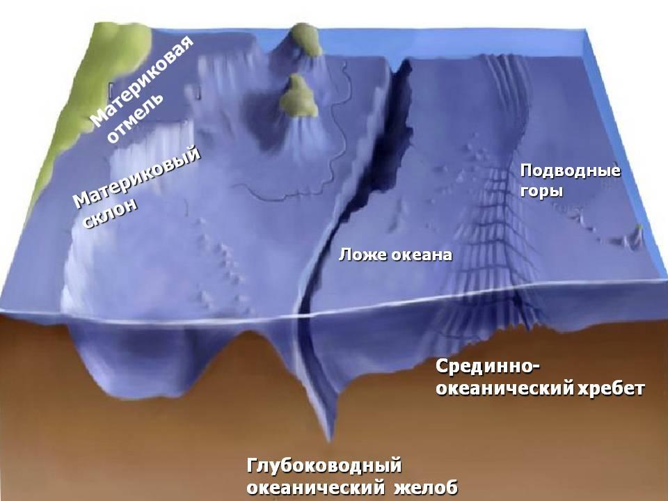 http://900igr.net/datas/geografija/Dno-okeana/0006-006-Relef-dna-Mirovogo-okeana.jpg