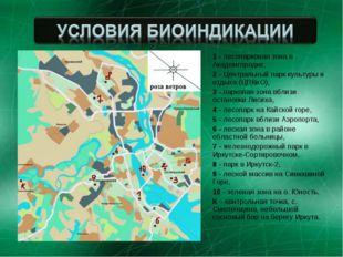 1 - лесопарковая зона в Академгородке, 2 - Центральный парк культуры и отдыха
