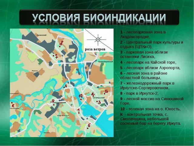 1 - лесопарковая зона в Академгородке, 2 - Центральный парк культуры и отдыха...