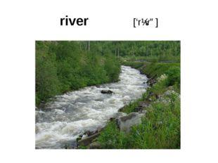 river ['rɪvə]