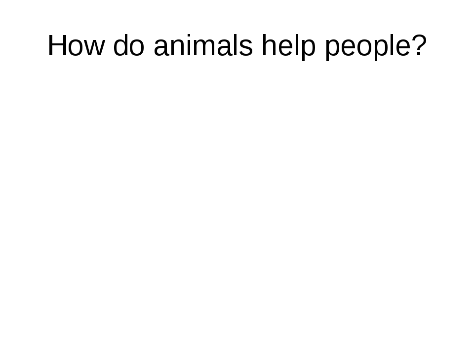 How do animals help people?