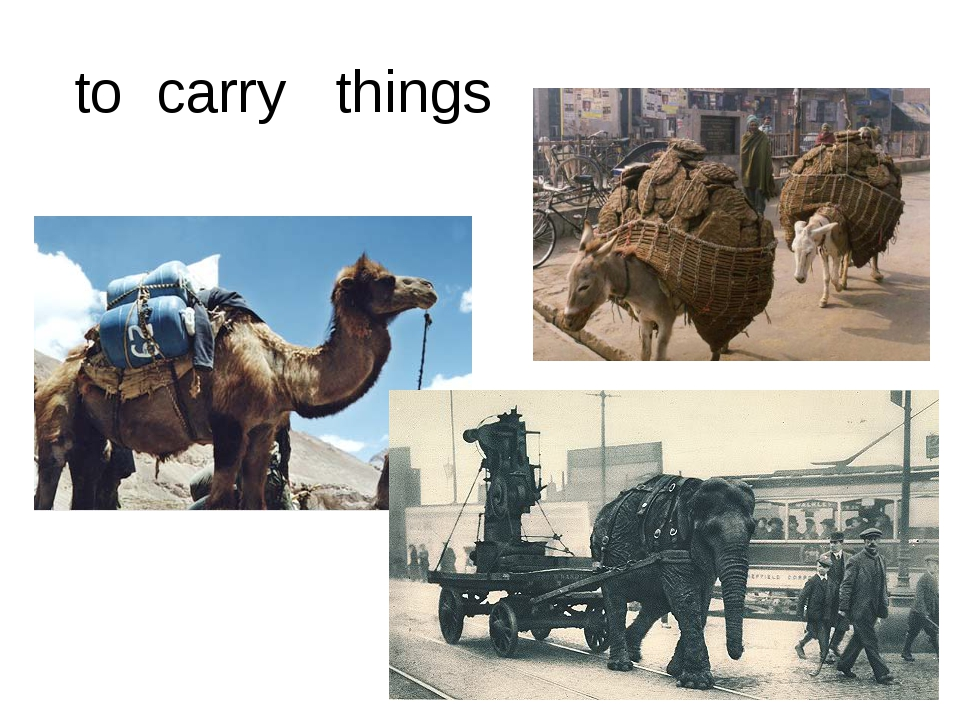 to carry things