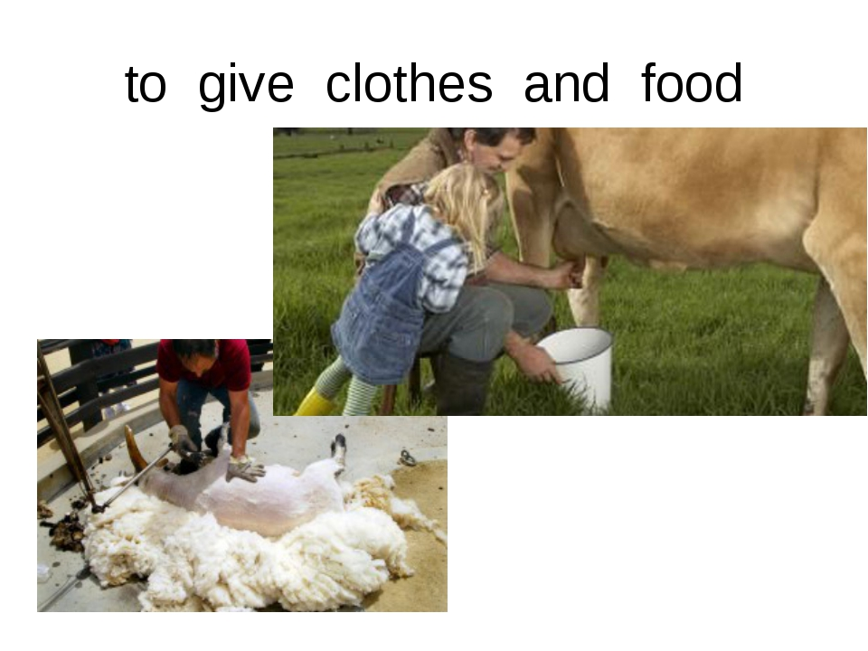 to give clothes and food