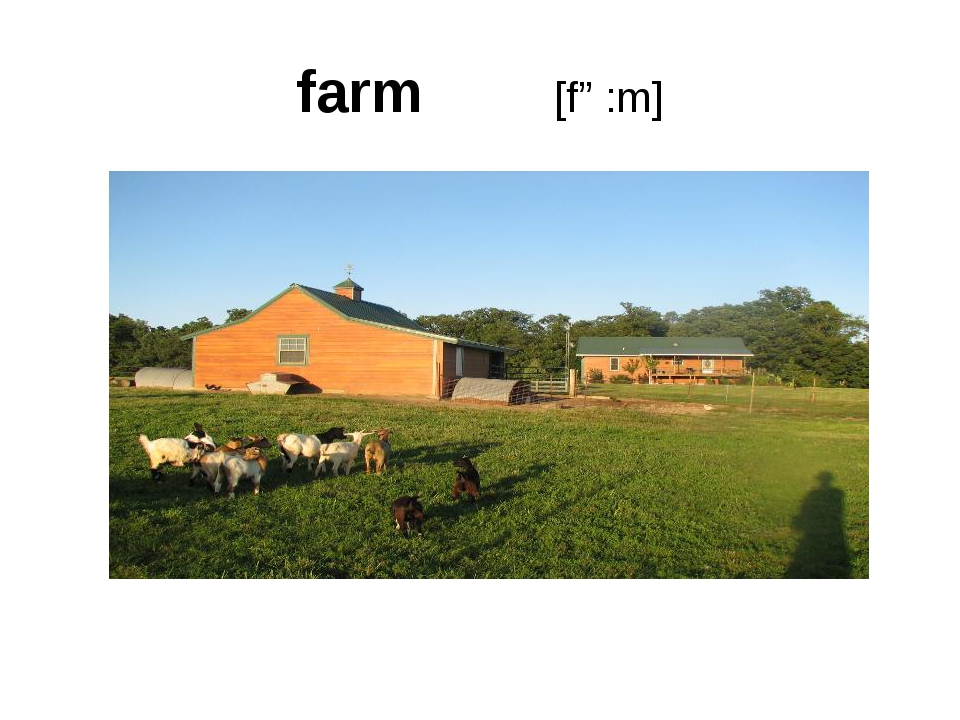 farm [fɑ:m]