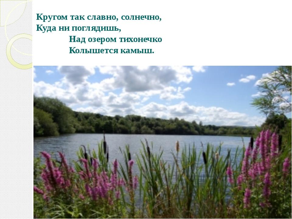 Кругом так славно, солнечно, Куда ни поглядишь, Над озером тихонечко Колышетс...