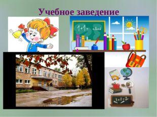 Учебное заведение