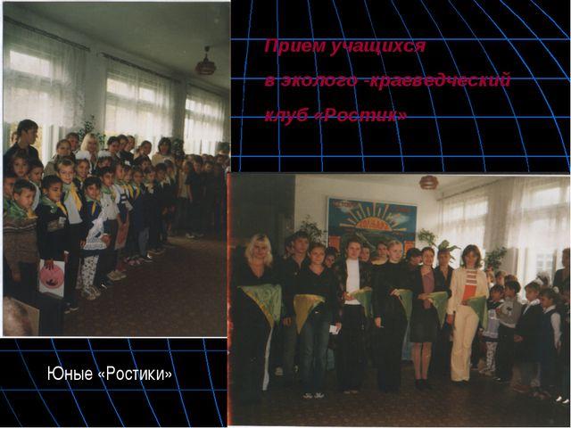 Прием учащихся в эколого -краеведческий клуб «Ростик» Юные «Ростики»