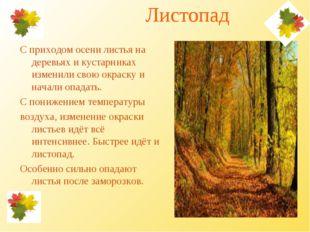Листопад С приходом осени листья на деревьях и кустарниках изменили свою окр