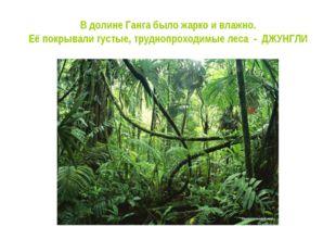 В долине Ганга было жарко и влажно. Её покрывали густые, труднопроходимые лес