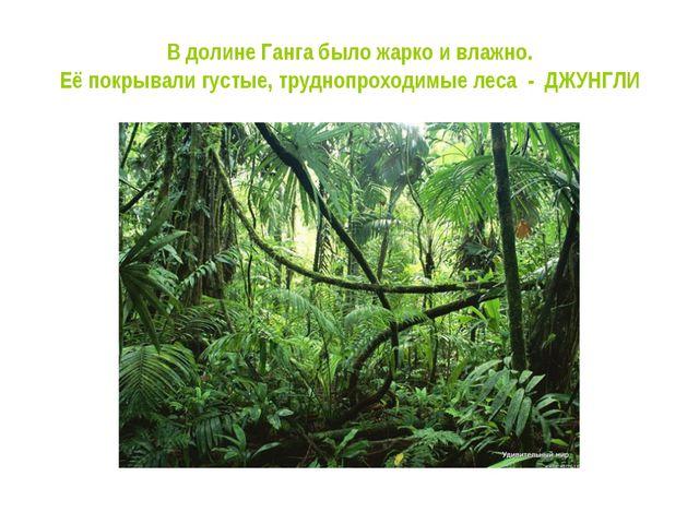 В долине Ганга было жарко и влажно. Её покрывали густые, труднопроходимые лес...