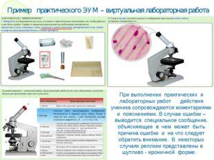 При выполнении практических и лабораторных работ действия ученика сопровожда
