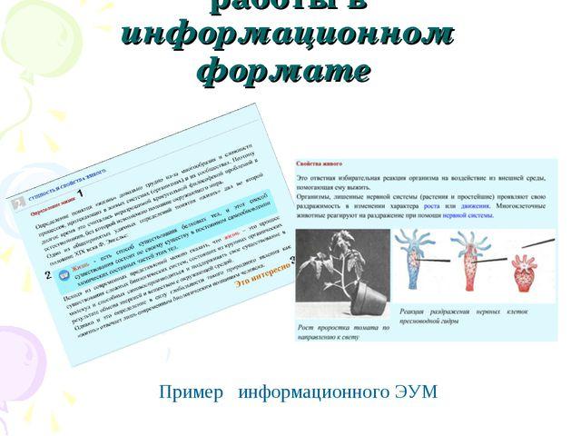 Организация учебной работы в информационном формате Пример информационного ЭУМ