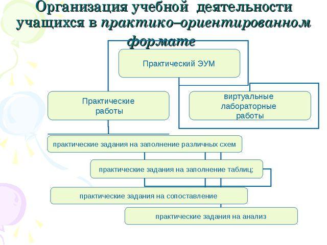 Организация учебной деятельности учащихся в практико–ориентированном формате
