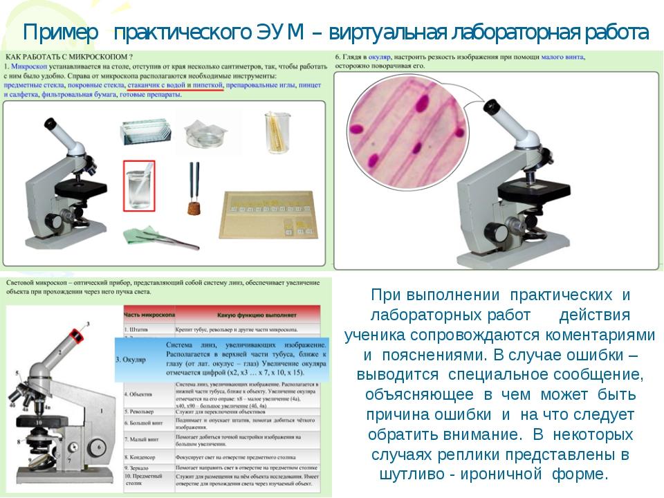 При выполнении практических и лабораторных работ действия ученика сопровожда...