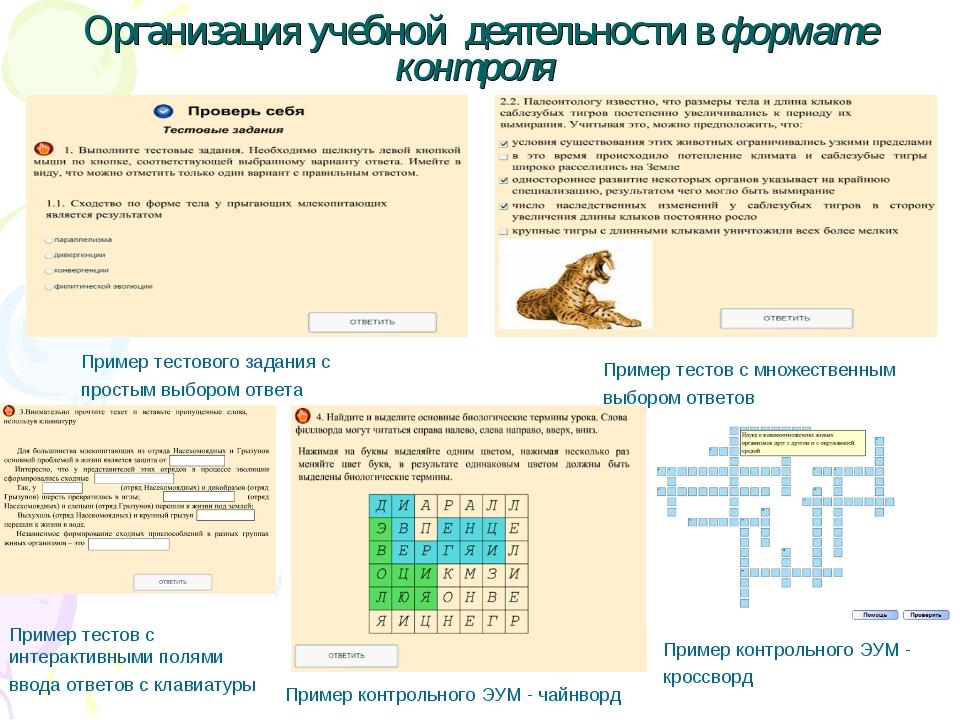 Организация учебной деятельности в формате контроля Пример контрольного ЭУМ -...