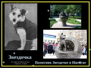 Звездочка Памятник Звездочке в Ижевске До старта человека в космос оставалось