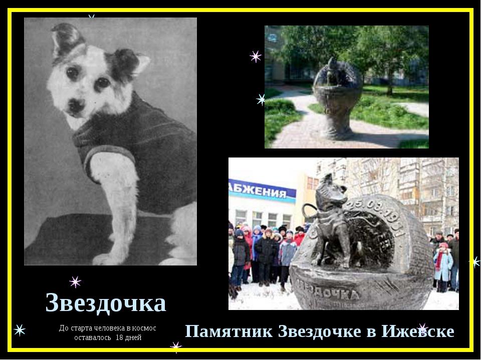 Звездочка Памятник Звездочке в Ижевске До старта человека в космос оставалось...