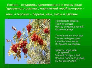 """Есенин - создатель единственного в своем роде """"древесного романа"""", лирически"""